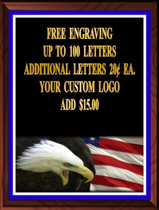 EAGLE AND FLAG PLAQUE - Product Image