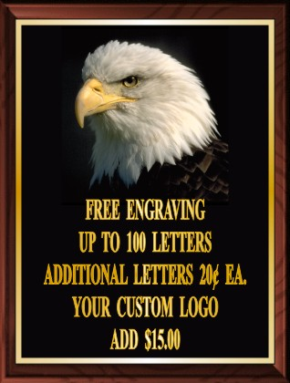 EAGLE HEAD PLAQUE - Product Image