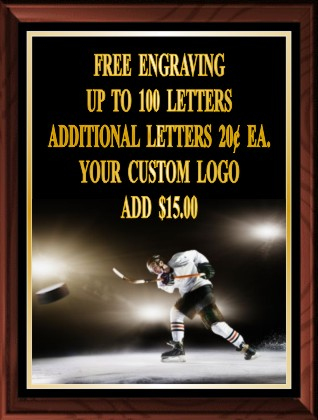 ICE HOCKEY COLOR PLAQUE - Product Image