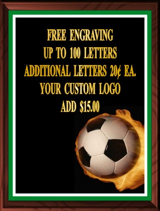SOCCER FIRE COLOR PLAQUE - Product Image