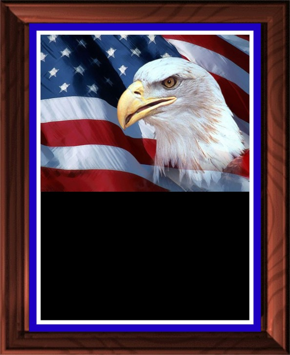 EAGLE HEAD ON FLAG PLAQUE - Product Image