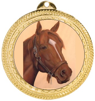 HORSE HEAD MEDAL - Product Image