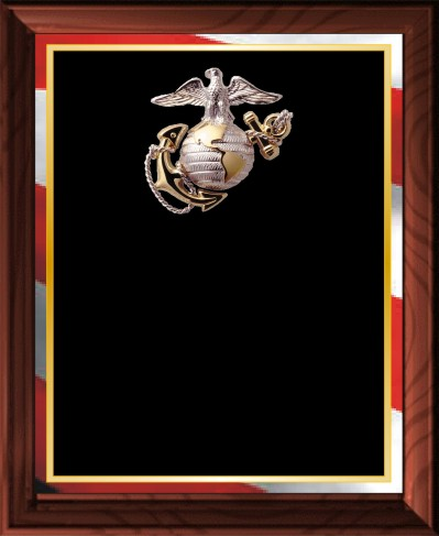 MILITARY PLAQUE - Product Image