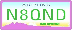 NAME  TAG OR KEY RING ARIZONA LICENSE PLATE - Product Image