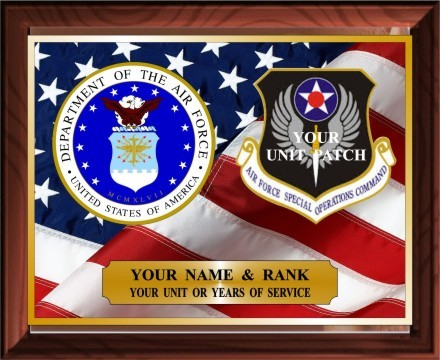 US AIR FORCE SERVICE PLAQUE - Product Image
